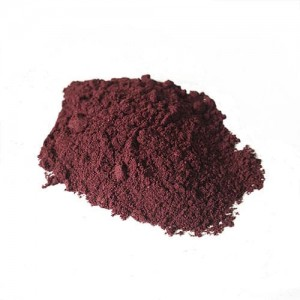 Blueberry Fruit Powder
