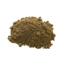 Chanca Piedra 4:1 Powdered Extract