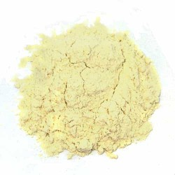 Garlic Odorless Powder