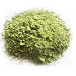 Chayote Powder