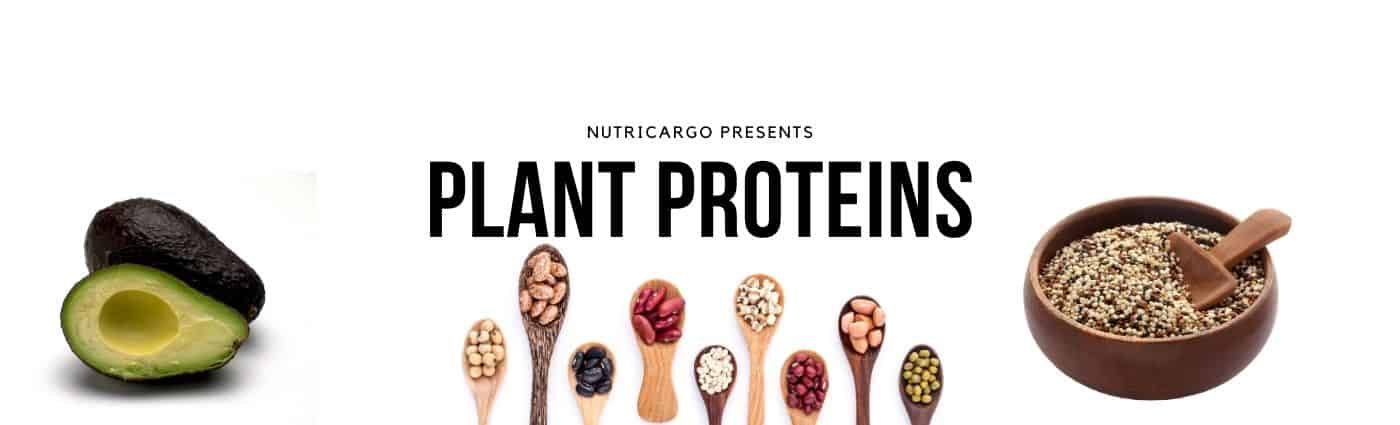 NutriCargo Introduces: Plant Proteins